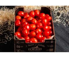 Продам помідори